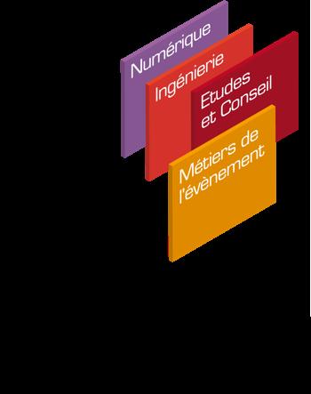 Vignette document Emplois, compétences et formation au sein des Entreprises de Service du Numérique (ESN) et des Sociétés d'Ingénierie et de Conseil en Technologies (ICT) en France : parcours des salariés